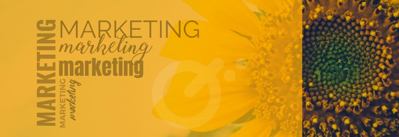 ¿Qué es Marketing y que importancia tiene para mi negocio?